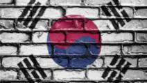 coronavirus sinucidere coreea de sud