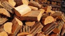 Minori cercetați de poliție pentru furt de lemne din școală