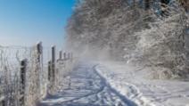 ALERTĂ METEO. Meteorologii au emis un nou cod GALBEN de fenomene severe
