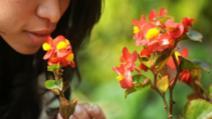 Nu oferi flori unei femei stângace! S-ar putea să nu simtă mirosul