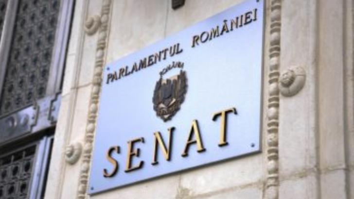 Ședință de plen a Senatului, la ora 16:00. CE proiecte se află pe ordinea de zi