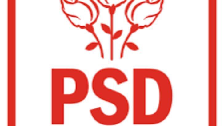 PSD Arad își va desemna liderul