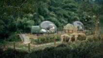 Aceste bule transparente, amplasate în junglă, își invită oaspeții să doarmă printre elefanți