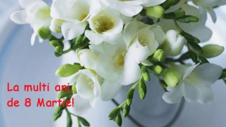Buchete Flori de 8 Martie & Ziua Femeii