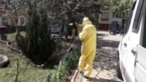 Primăria București a început lupta împotriva căpușelor și tânțarilor