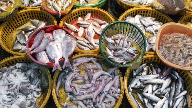 pesti, crustacee