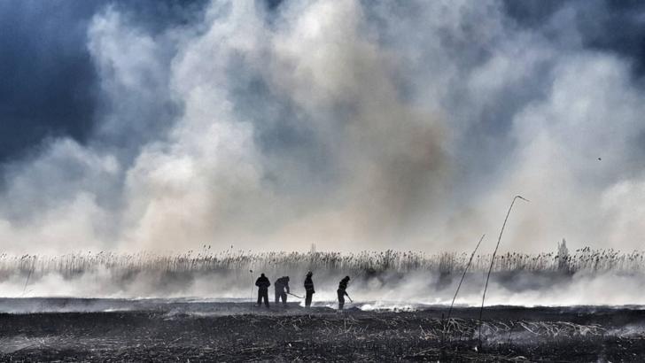 incendiu București, între Dârza și  Periș