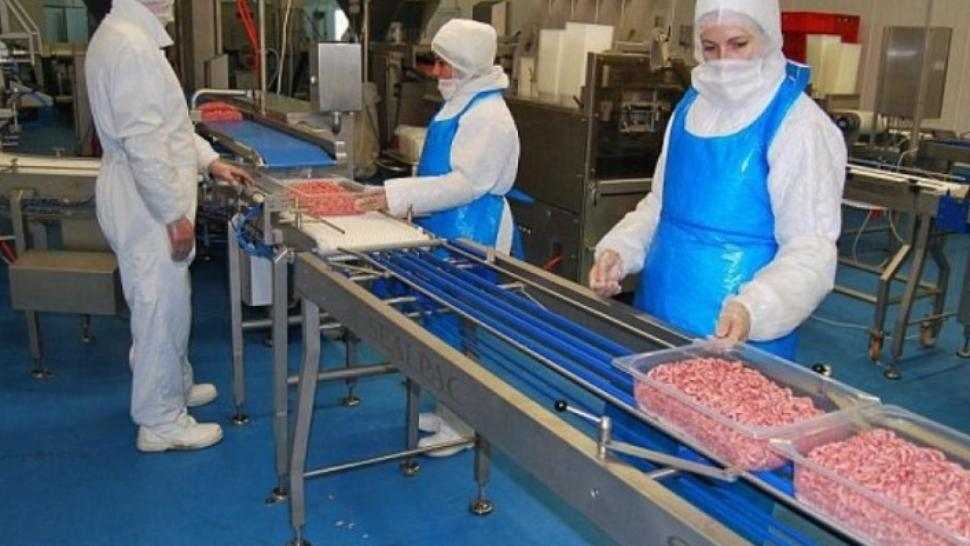 Nou scandal cu sezonierii din industria cărnii în Germania. MAE, anunț despre implicarea cetățenilor români