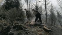 incendii harghita
