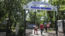 Parcurile din Sectorul 2, din București, au fost redeschise. În ce condiţii te poţi plimba / Foto: Inquam Photos / Octav Ganea