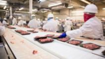 Încă 80 de muncitori români, infectaţi cu coronavirus, în Germania. Anunţ important de la MAE