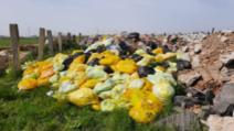 bomba biologica pe camp