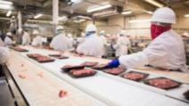 Zeci de români aflați la muncă în Germania, testaţi pozitiv cu COVID-19