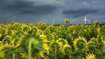 COD PORTOCALIU de fenomene meteo SEVERE: furtuni, ploi torențiale și grindină. HARTA potopului, actualizată