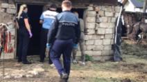 Suceveni pedepsiți penali după ce si-au bătut caii Foto: Poliția Română