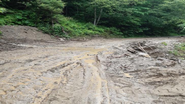 ARGEȘ: Mașini blocate din cauza ploilor abundente VIDEO