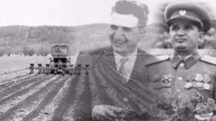 ceausescu militar