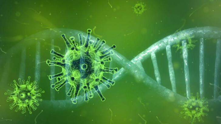 coronavirus bilant