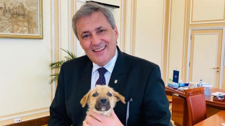 Marcel Vela a anunțat înființarea Poliiei Animalelor in cadrul MAI Foto: Facebook