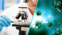 COVID-19. OMS a decis întreruperea imediată a testelor testele clinice pentru hidroxiclorochină şi combinaţia Lopinavir-Ritonavir