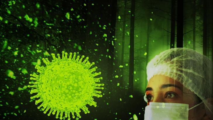 sibiu coronavirus