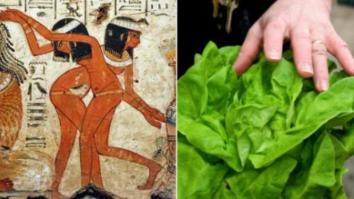 Legătura şocantă dintre salata verde şi sex. Cel mai mare secret al egiptenilor