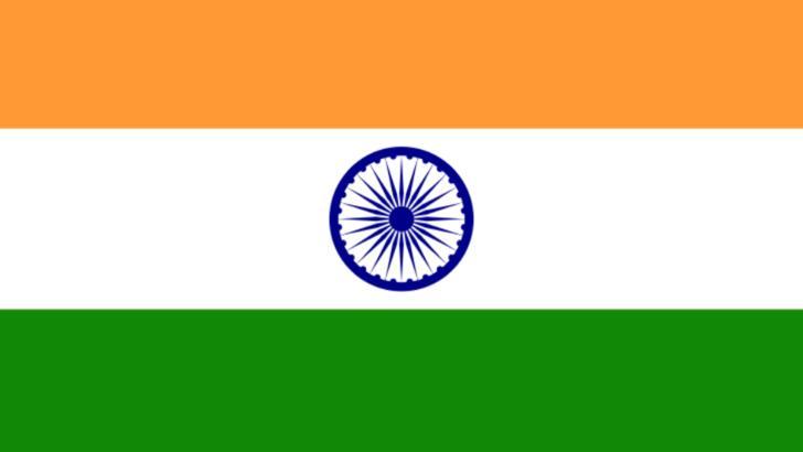 Steag India
