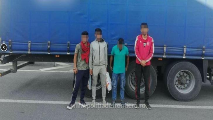 41 de migranți au fost descoperiți în 24 de ore la graniță