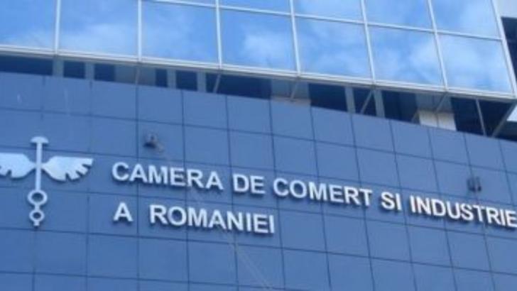 CCIR se alege cu 46 de hectare de tere de la Romexpo