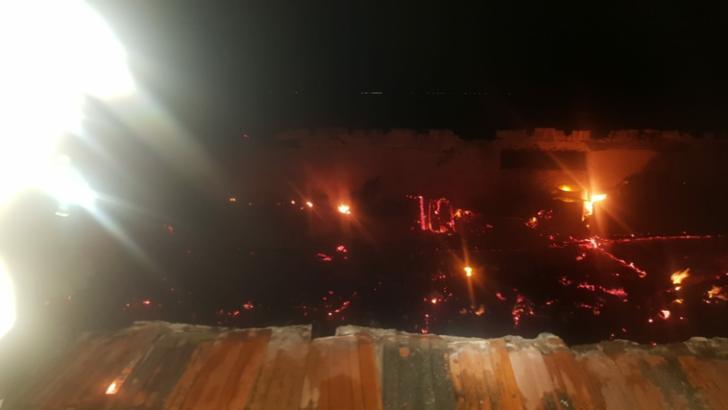 60 de animale moarte într-un incendiu, în județul Arad