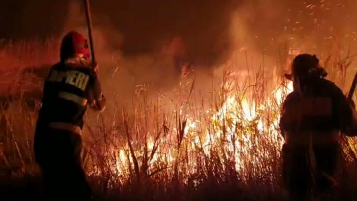 FOTO/ VIDEO Incendiu violent la Vadu. Au ars 400 de ha de vegetație uscată