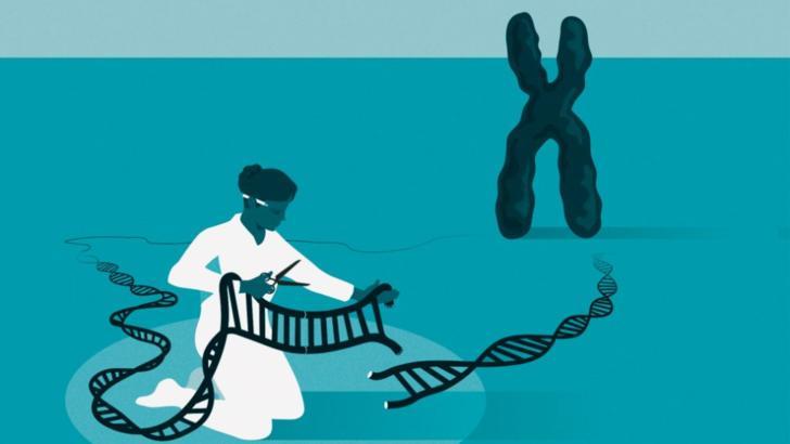 """Premiul Nobel pentru Chimie, acordat pentru """"rescrierea Codului vieții"""". Două femei au descoperit cum poate fi editat genomul uman: Emmanuelle Charpentier, Jennifer Doudna Foto: Nobelprize.org"""