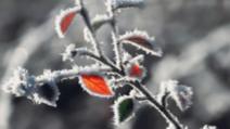 Zile reci și nopți geroase, în următoarele două săptămâni. Prognoza până pe 6 decembrie