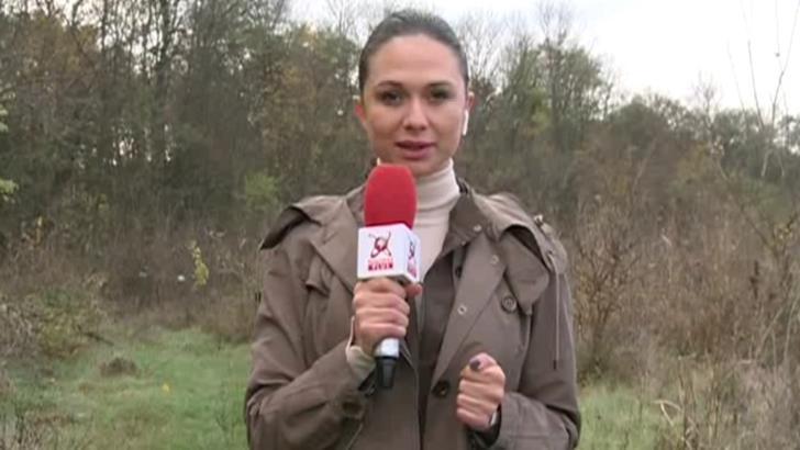 CHECK-IN. Pădurea Băneasa, pericol pentru vizitatori. Jogging în bătaia puștii