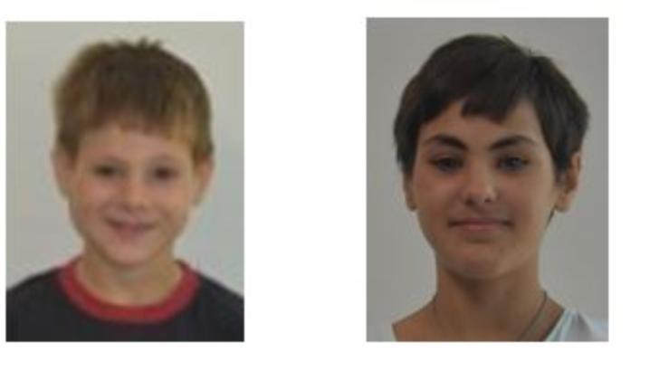 Poliția Capitalei cere sprijin pentru a găsi doi frați minori dispăruți de trei zile din Sectorul 5