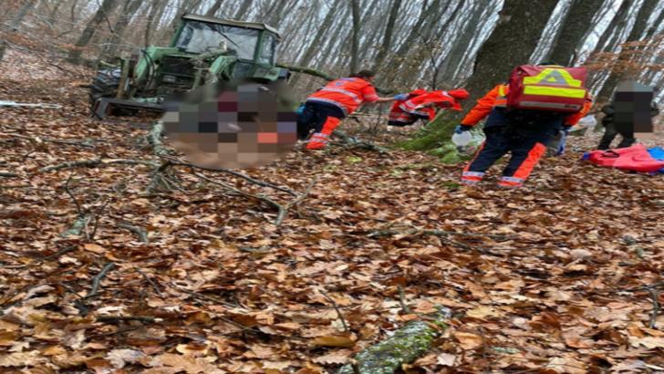 Tragedie intr-o padure din Bistrita-Nasaud! Un barbat a murit dupa ce a fost lovit de un copac