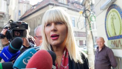Elena Udrea, fost ministru al Dezvoltării Regionale şi Turismului
