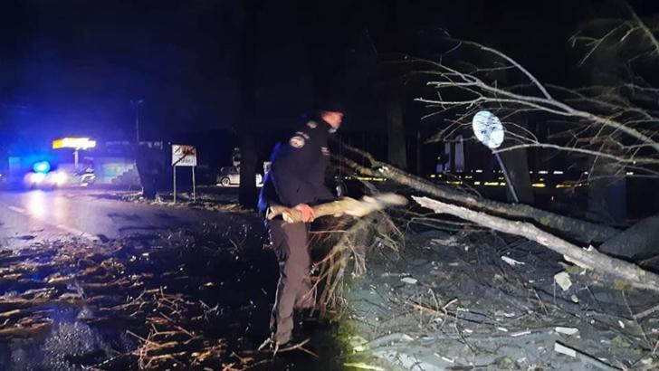 Un drum național din Vrancea a fost BLOCAT de arborii doborâţi de vântul puternic - Jandarmii au intervenit