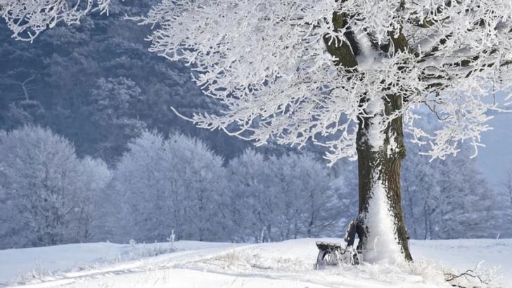 Prognoza meteo - Cod PORTOCALIU de ninsori viscolite: rafale de până la 85 km/h