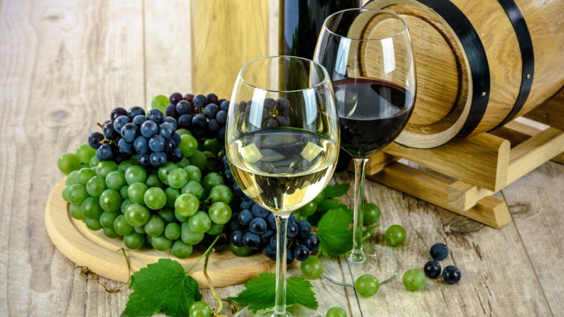Studenții învață să facă vin, aceasta fiind considerată teza de doctorat