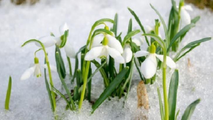 Vremea va fi extrem de rece, în majoritatea regiunilor