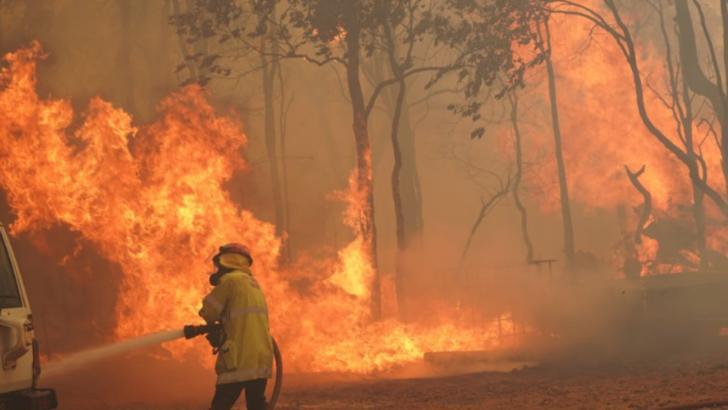 Incendii vegetatie Australia
