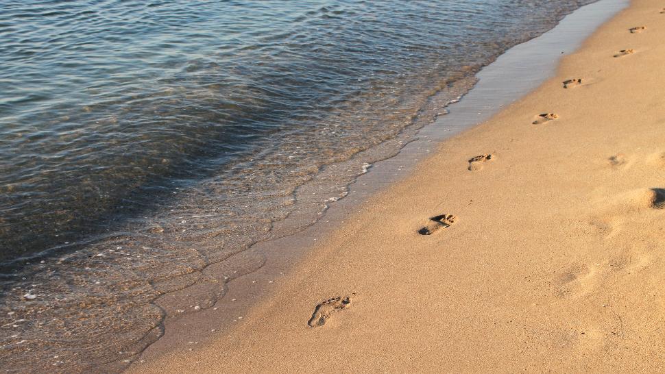 Descoperire arheologică în zona de lărgire a plajelor din Constanța. Ce se întâmplă acum cu proiectul