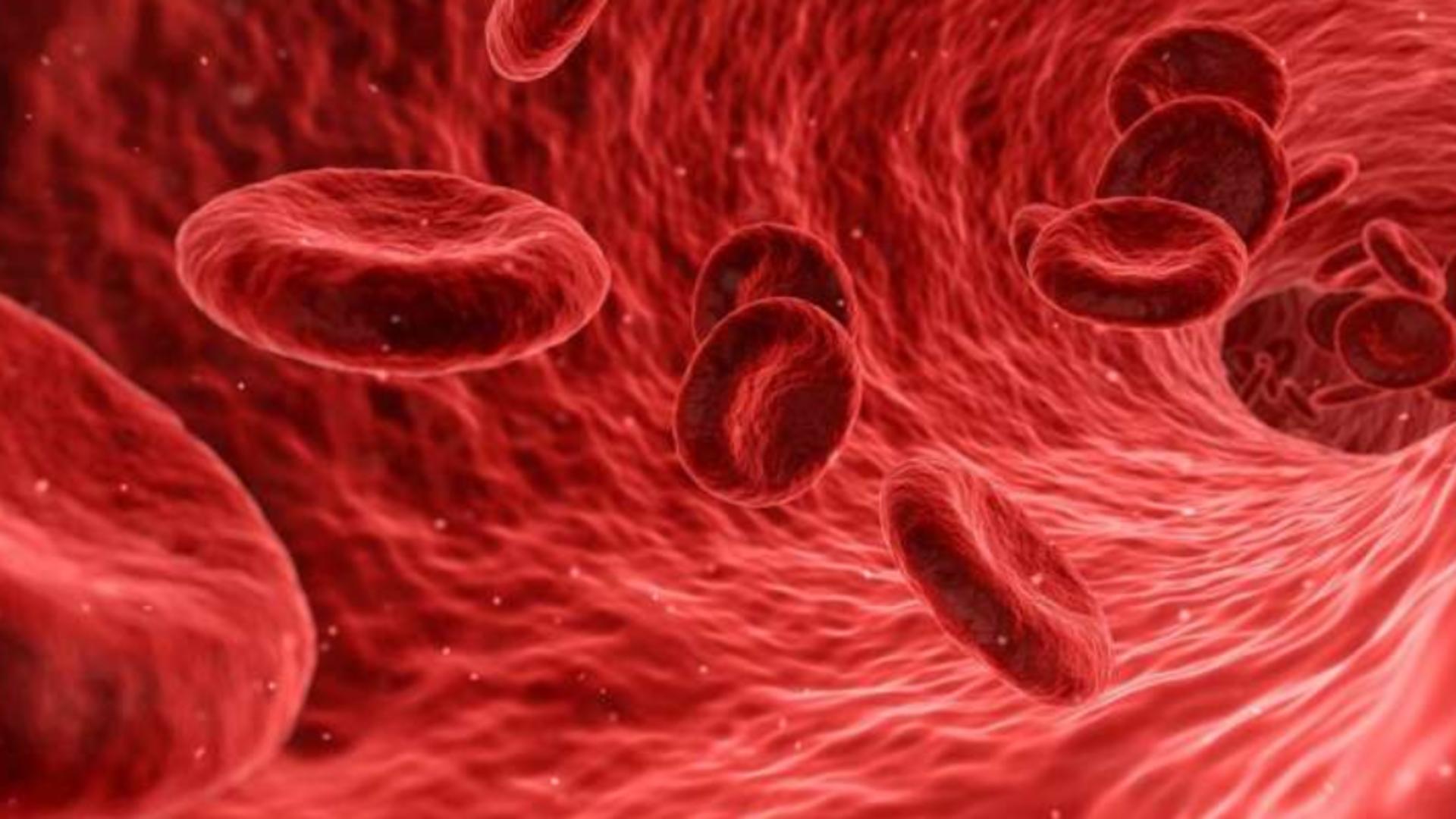 cheaguri sânge Foto ilustrativ