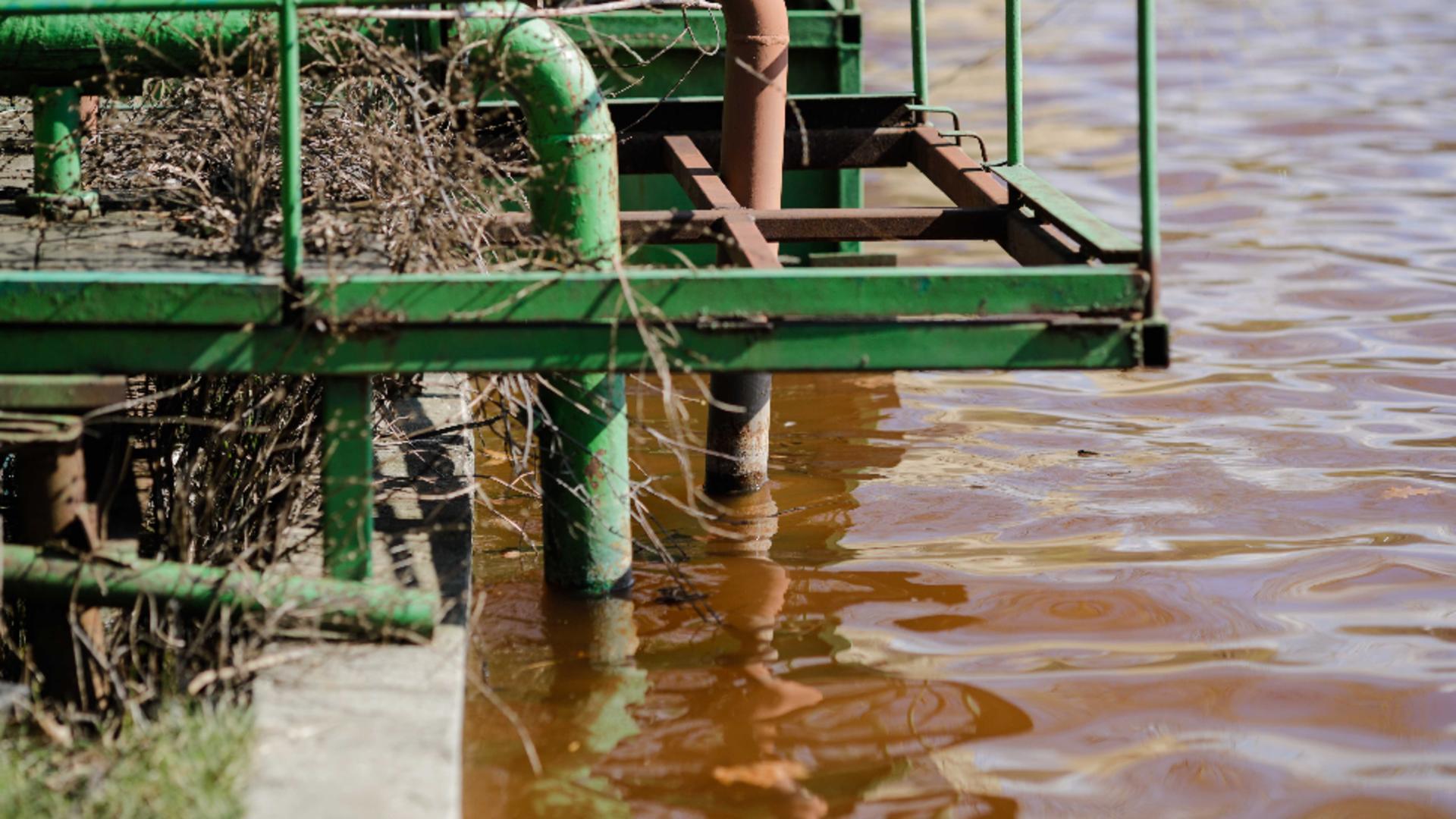 Bomba ecologica in IOR/foto: George Calin, INQUAM