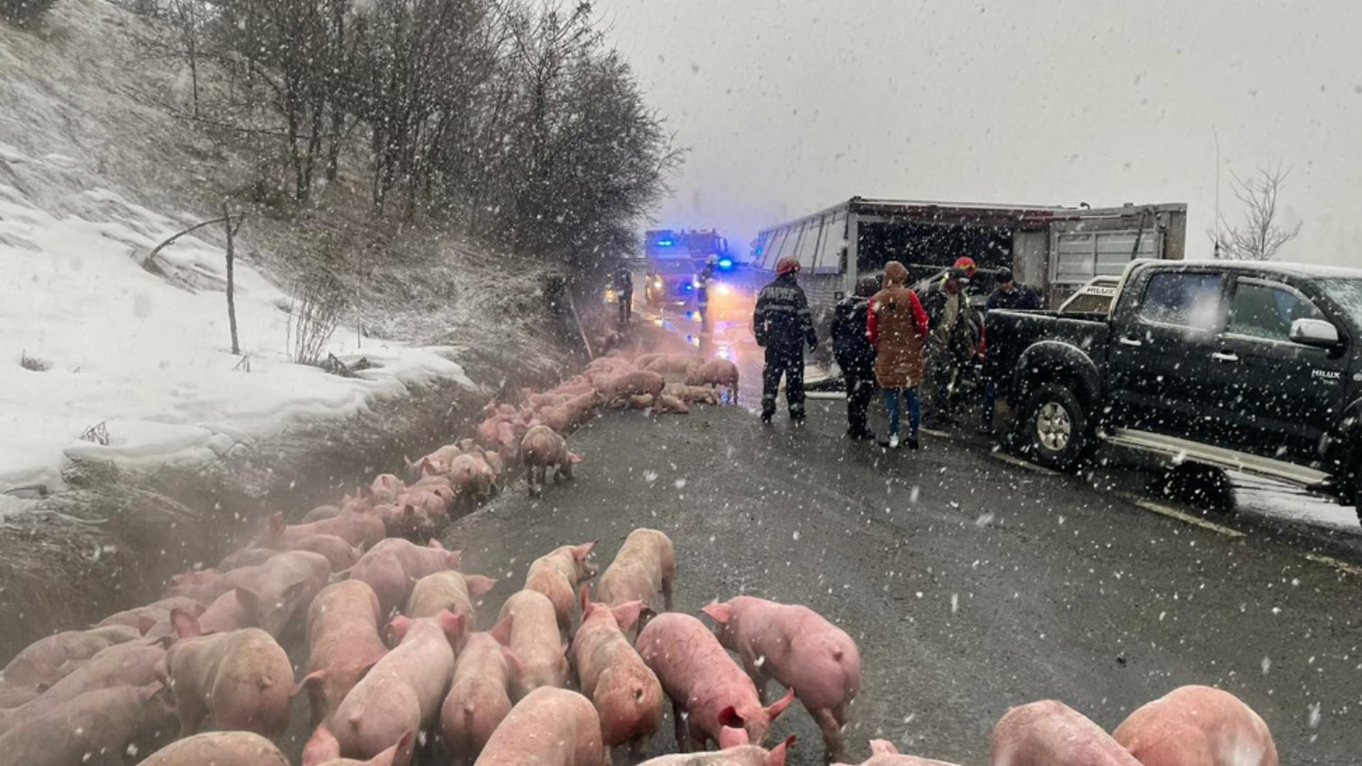 Accident pe DN17 (sursă foto: infobistrita.ro)