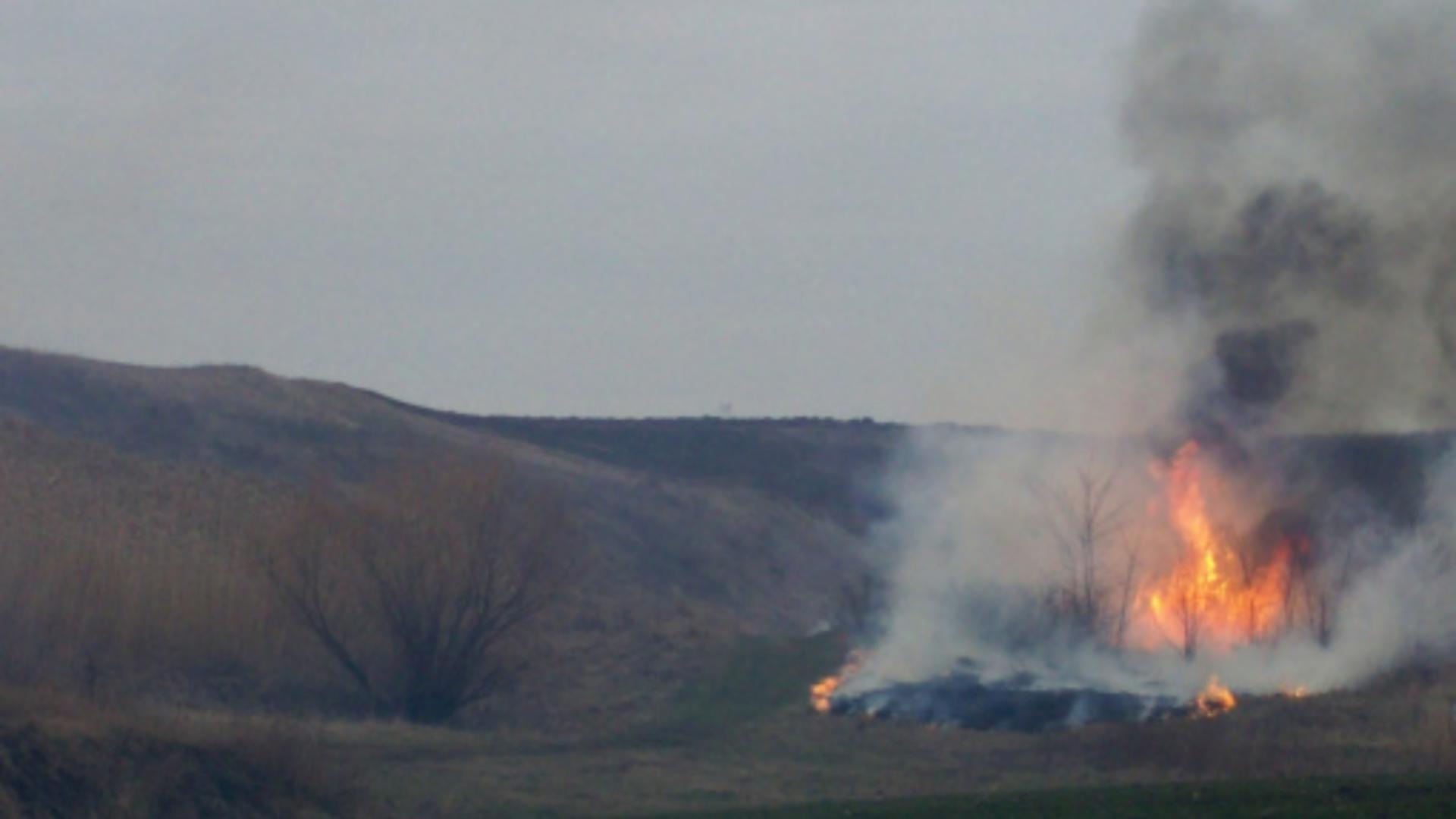 Arderile de vegetatie sunt poluante (Garda de Mediu)