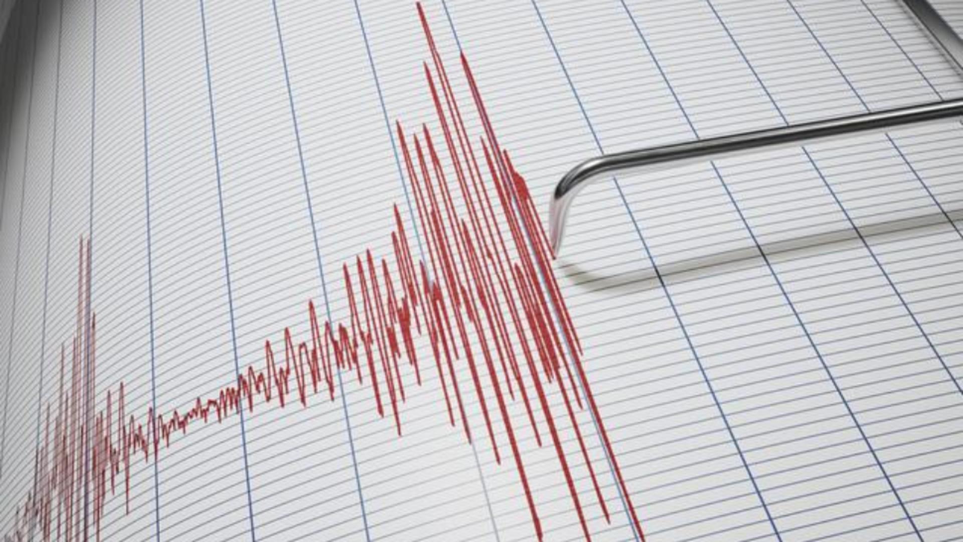 Cutremur puternic Noua Zeelandă