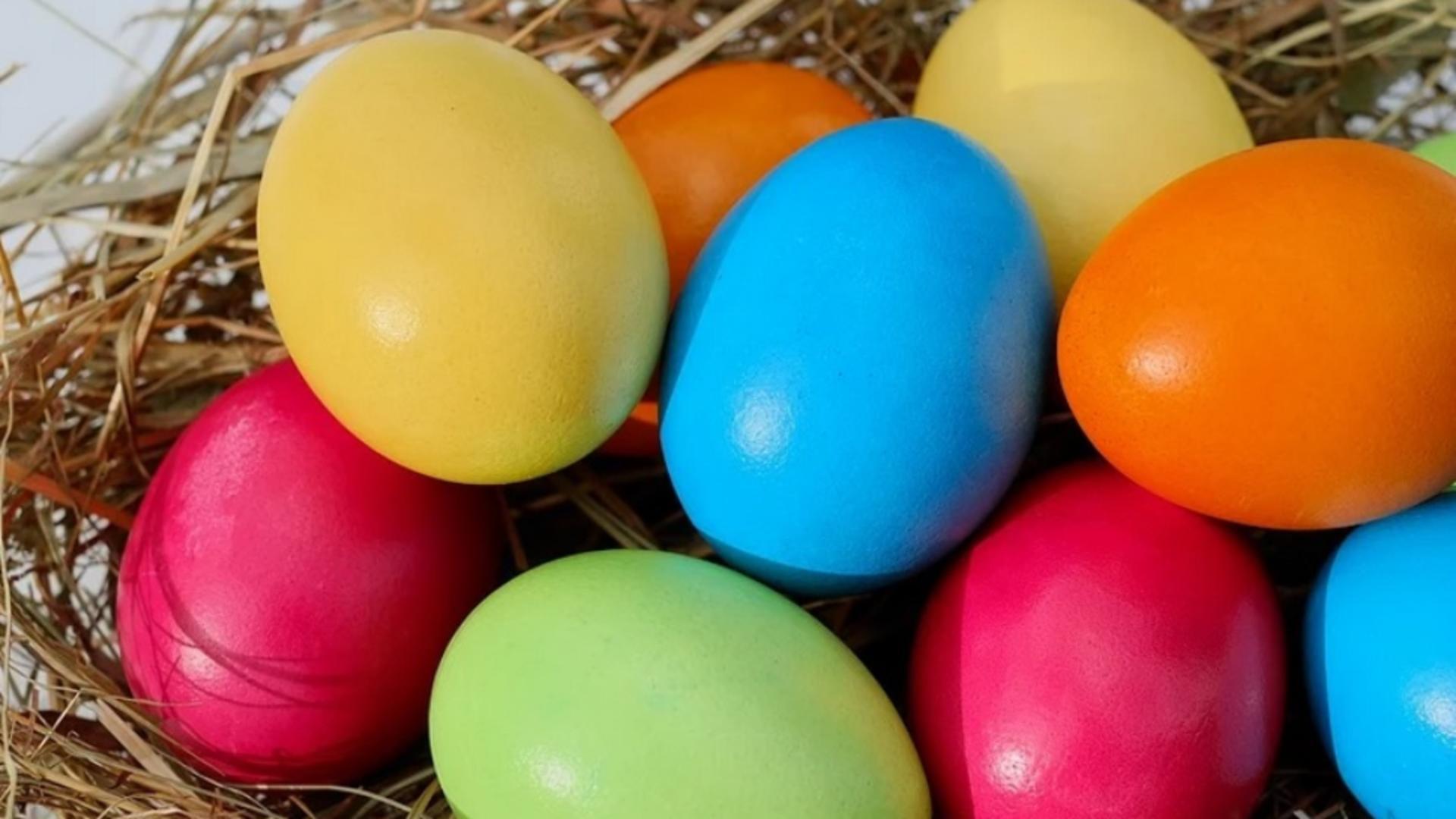 Aditivi vopsea de ouă