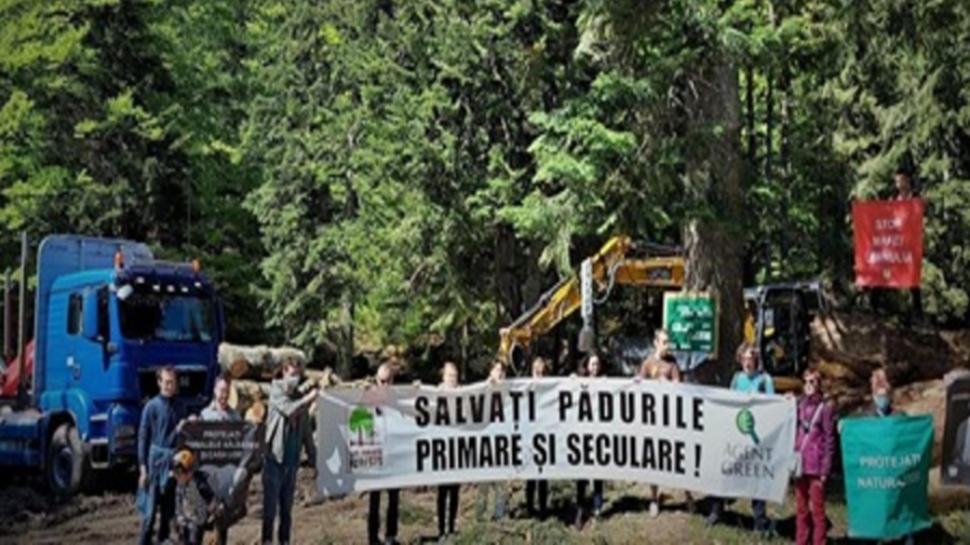 Protest Agent Green, Valea cerbului (sursă foto: FB)